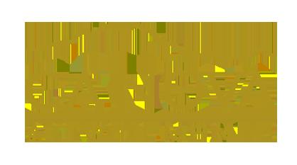 logo canova